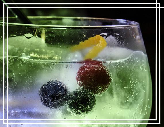 foto-gin-tonic